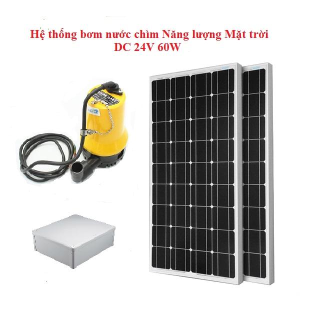 nhuttran161 - Hệ thống bơm nước chìm Năng lượng mặt trời 24V